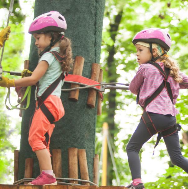 Sortie scolaire pédagogique accrobranche Forêt de Meudon Chaville