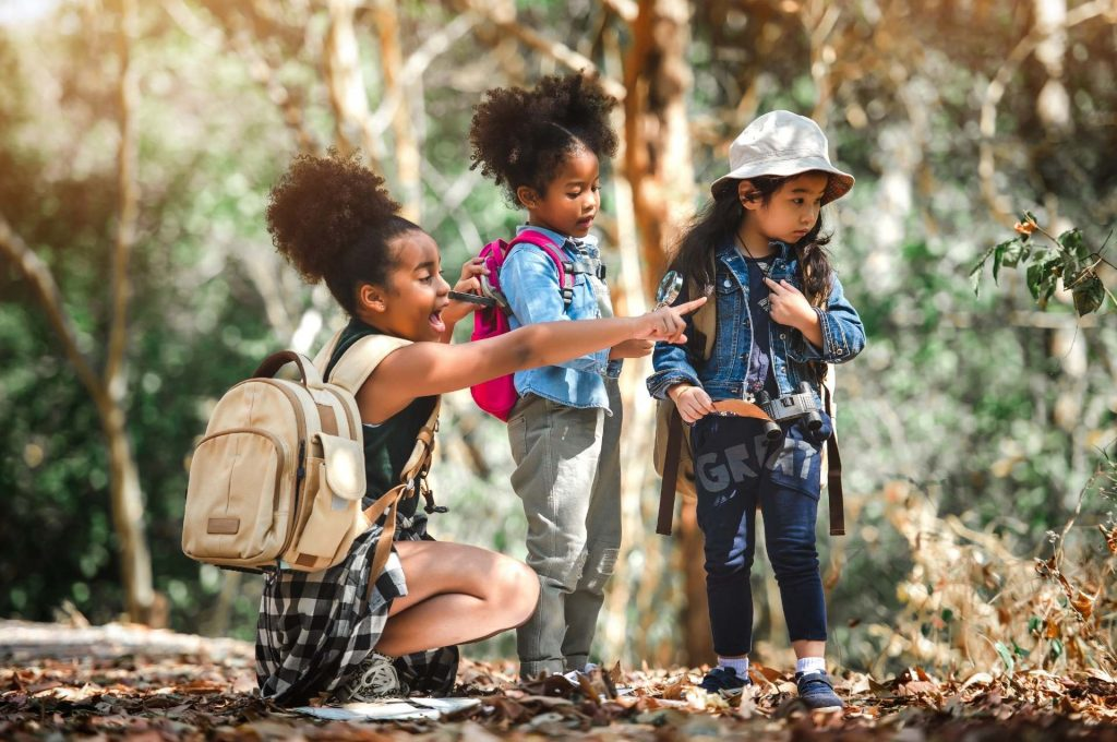 Sortie scolaire pédagogique accrobranche région parisienne et Chartres : à la découverte des arbres